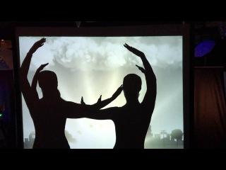 Театр теней, фрагмент программы Путешествие по Москве на промо мероприятии Елки 2017