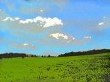 Pola zielone -J