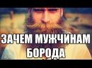 Почему мужчина должен быть с бородой Значение бороды для славянина Кто и почему нам навязал бритьё