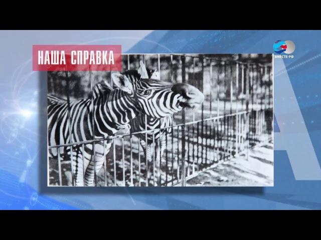 Наша марка. Калининградский зоопарк
