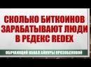 Сколько биткоинов зарабатывают люди в Редекс Redex