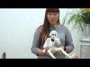 Как рождаются игрушки. Игрушки из шерсти Жанны Бугровой. Куклы Светланы Оспищев