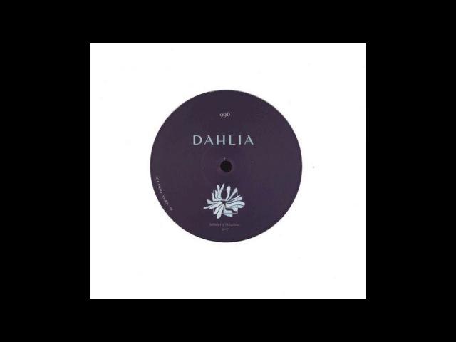 I Love You - Nopax | DAHLIA [2018]