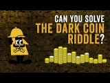 Can you solve the dark coin riddle - Lisa Winer