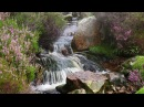 Sound of Water Johnnie Lawson Relaxing Tiny Waterfall Heather