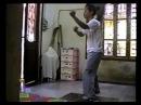 Wingchun Master Nguyen Nam Vinh 5 animals form