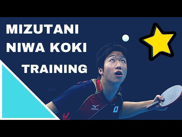 Training With MIZUTANI Jun and NIWA Koki @ World Cup 2017 Table Tennis (Short Form - Private Record)