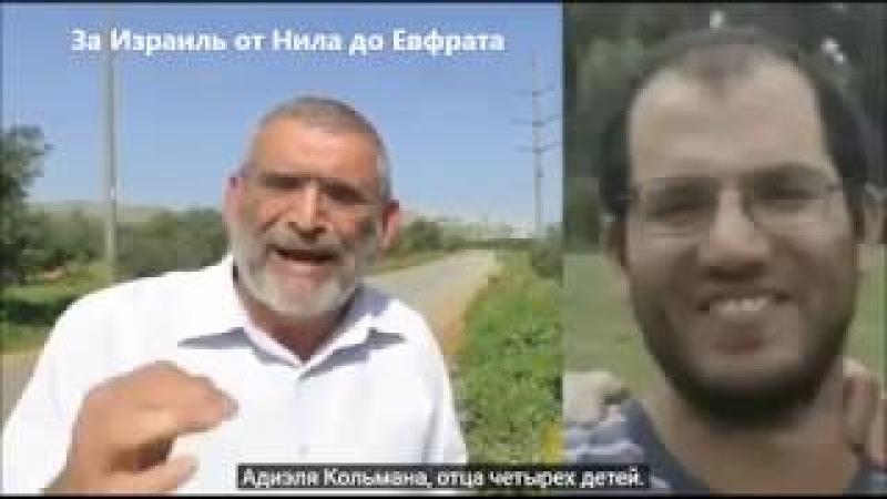 Бездействие правительства Израиля ведёт к дальнейшему пролитию еврейской крови