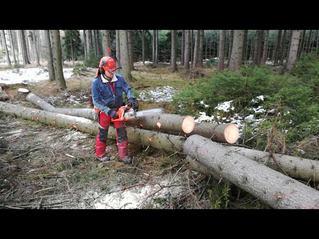 Lumberjack dubbed Small Harvester and Husqvarna 560 XP Chain Saw