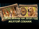 Талисманы на 2018 год Желтой Собаки, что принесет удачу, любовь и достаток.