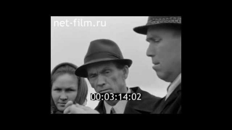 1976г. село Виловатово. совхоз Сила. Горномарийский район. Марий эл