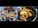 Catch and cook dungeness crab how to catch crabs on Oregon coast