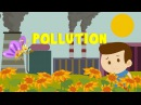 Learn about Pollution