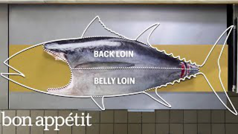 How To Butcher a Whole Tuna Every Cut of Fish Explained Handcrafted Bon Appétit