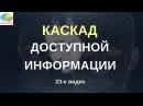 Игры мозга Как не стать заложником суеверий Каскад доступной информации Неприятия потерь
