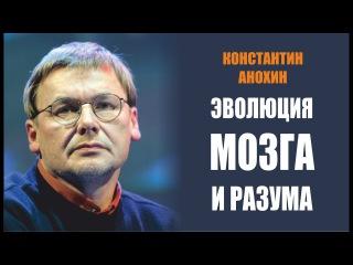 Константин Анохин / Эволюция мозга и разума