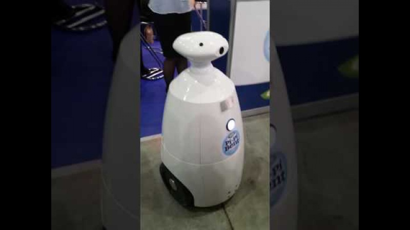 Робот Федя на кошачьей выставке Роял Канин Гран При