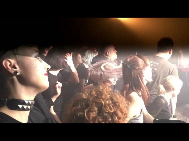 Schwefegelb Live FLEISCH XI Schwefelgelb EP Released Party