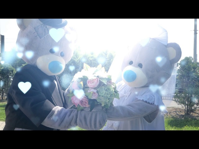 Мишки Тедди на свадьбе   Империя Радости