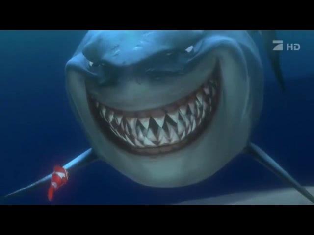 ЗДОРОВО! Акула из немо.