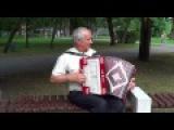 Дядя Ваня играет в парке на гармони!