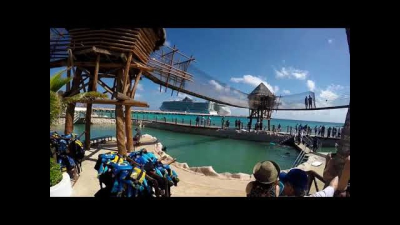 Costa Maya Port Pool | MEXICO | Royal Rudy Family