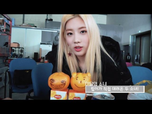이달의소녀탐구 262 (LOONA TV 262)