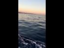 Вечерний закат 🌅 в открытом море