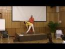 Свами Шивадасананда - Как работает йога Пять простых принципов здоровой и позитивной жизни
