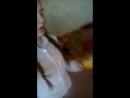 Карина Энгельбрехт Live