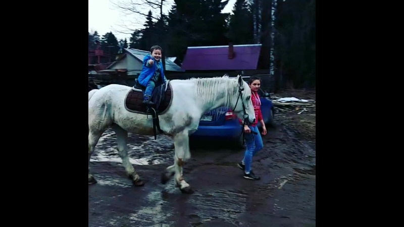 Катание на лошадях Фирсановка