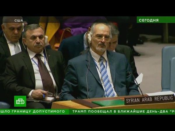 Небензя предупредил Вашингтон отяжелых последствиях вслучае удара по Сирии