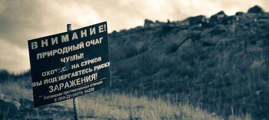 Дать объявление в постскриптум горно-алтайск частные объявления в ско г петропавловск