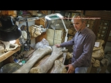 Томские и французские ученые под Ачинском нашли мамонтов