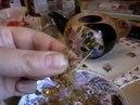 Иван-Чай: его заварка с другими травами, действие на организм.