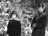 Николай Погодин, Люсьена Овчинникова - Старый клён