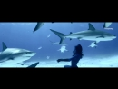 Flashtronica - I Can`t Stop (Dj Kapral Remix) Relax !!!