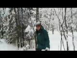 Зимняя прогулка по лесу. Январь 2018 год:-)