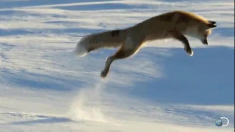 кувырок в снег