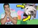 El hermano VIOLADOR de PEPPA PIG 😈😱 JAMÁS veas Le Cochon danseur a las 3:33 AM