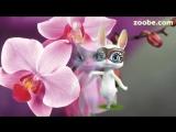 [v-s.mobi]Zoobe Зайка Я хочу поздравить С днем рождения тебя.mp4