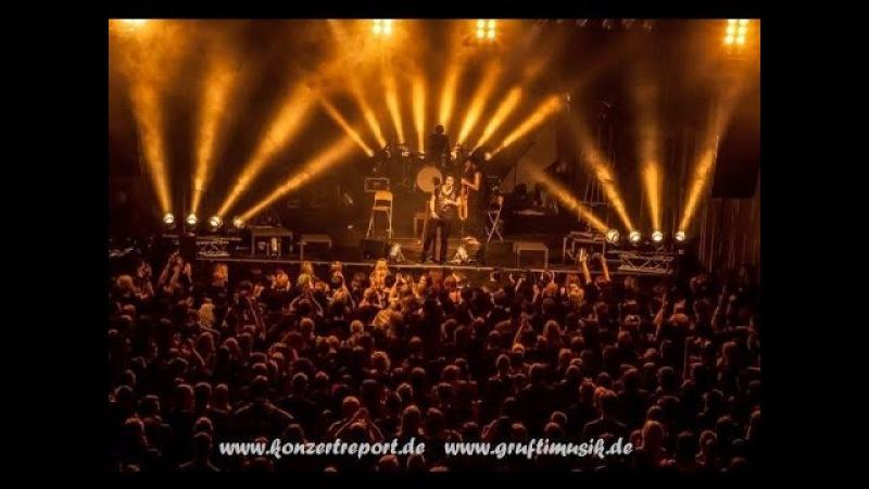 Letzte instanz - Ganz egal ( Dresden 03.10.10.2014)