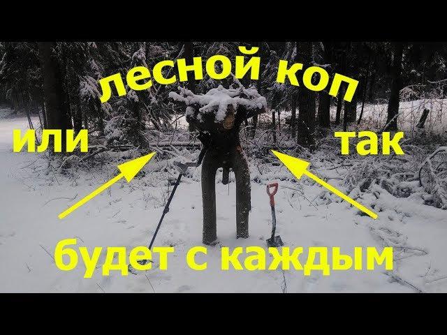 лесной поиск монет или так будет с каждым,кто не закапывает ямы