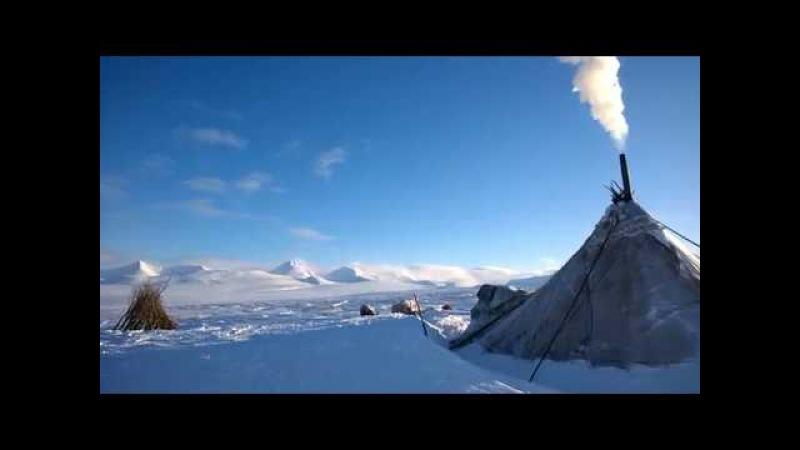 Чум ненцев у горы Пайер, самой высокой вершины Полярного Урала Polar Urals