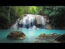 Beautiful Piano Music 24/7 Study Music, Relaxing Music, Sleep Music, Meditation Music
