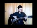 Тимур Афанасьев - Снегири ( кавер-версия песни Юрия Истомина )