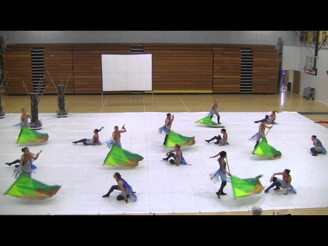 2014 CHS Color Guard Spring Show - Winter Guard Show
