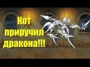 Кот Приручил Дракона в батл кэтс! Dragon King Vars Battle Cats Epicfest! Heavenly Tower Floor 25, 26