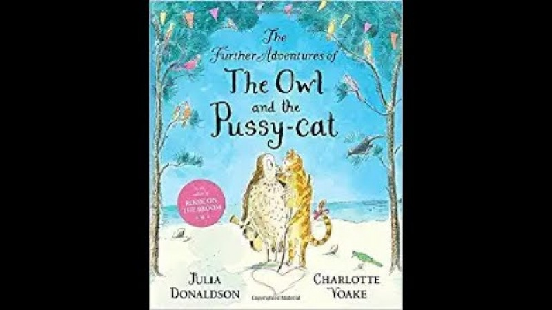 The Further Adventures of the Owl and the Pussy-Cat, read aloud - ReadingLibraryBooks