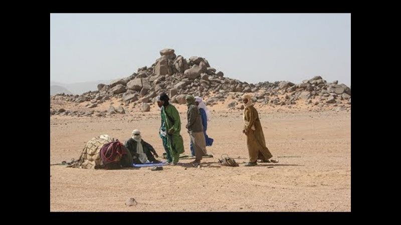 Сахарский кризис: королева пустынь нуждается в помощи России